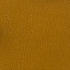 Camel Solid Decorator Fabric by Kravet