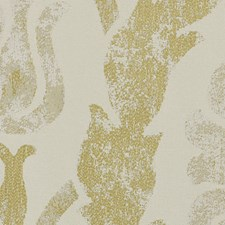 Ash Blonde Decorator Fabric by Scalamandre