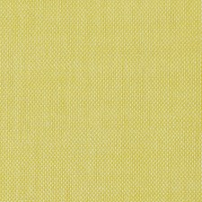 Canary Decorator Fabric by Scalamandre