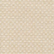 Whiter Decorator Fabric by Kasmir