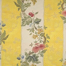 Multi On Yellow/Bisque Decorator Fabric by Scalamandre
