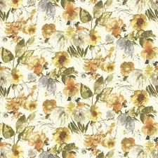 Sundance Decorator Fabric by Kasmir