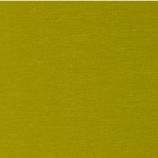 Grasshoper Solid Decorator Fabric by Kravet