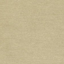 Herb Faux Silk Decorator Fabric by Duralee