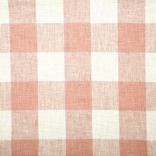 Blossom Check Decorator Fabric by Pindler