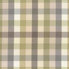 Grey Garden Decorator Fabric by Kasmir
