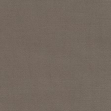 Rattan Solid Decorator Fabric by Duralee