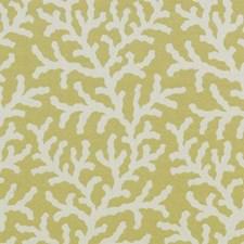 Moss Nautical Decorator Fabric by Duralee