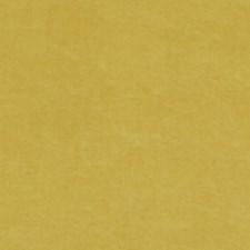 Mustard Velvet Decorator Fabric by Threads