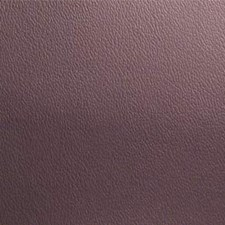 Wood Violet Decorator Fabric by Maxwell