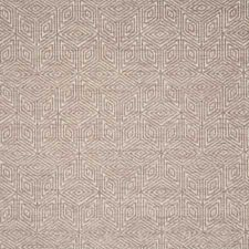 Feather Contemporary Decorator Fabric by Pindler