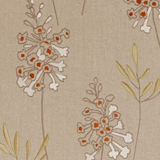 Spice Embroidery Decorator Fabric by Clarke & Clarke