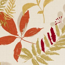 Spice Large Scale Decorator Fabric by Clarke & Clarke