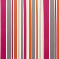 Fuchsia Stripes Decorator Fabric by Clarke & Clarke