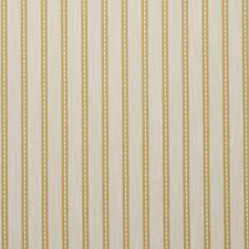 Acacia Stripes Decorator Fabric by Clarke & Clarke