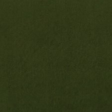 Herb Solids Decorator Fabric by Clarke & Clarke
