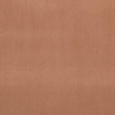 Sienna Decorator Fabric by Clarke & Clarke