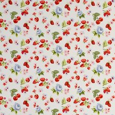Fruits Chambray Decorator Fabric by Clarke & Clarke