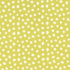 Citrus Decorator Fabric by Clarke & Clarke