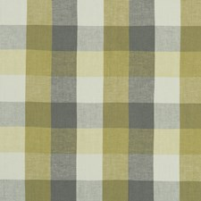 Citron/Natural Weave Decorator Fabric by Clarke & Clarke