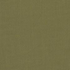 Pesto Solids Decorator Fabric by Clarke & Clarke
