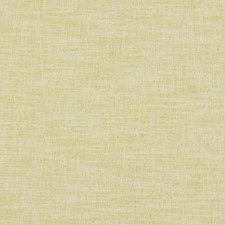 Citron Solid W Decorator Fabric by Clarke & Clarke