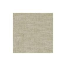 Birch Solids Decorator Fabric by Clarke & Clarke