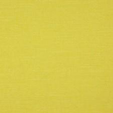 Chartreuse Decorator Fabric by Clarke & Clarke
