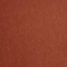 Coq De Roche Decorator Fabric by Scalamandre