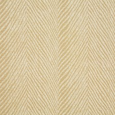 Cornsilk Decorator Fabric by Pindler