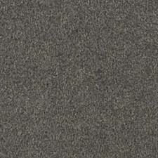 Greyhound Decorator Fabric by Robert Allen