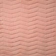 Blush Decorator Fabric by Pindler