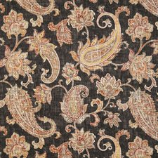 Onyx Traditional Decorator Fabric by Pindler