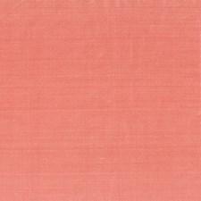 Blush Decorator Fabric by Stout