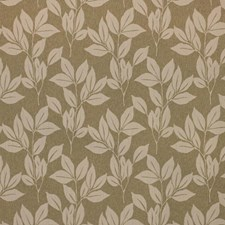 Thyme Decorator Fabric by RM Coco
