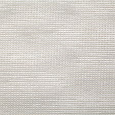 Pearl Solid Decorator Fabric by Pindler