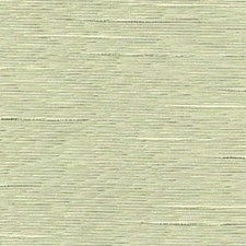 Juniper Decorator Fabric by RM Coco