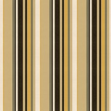Gold/Brown Stripes Decorator Fabric by Groundworks