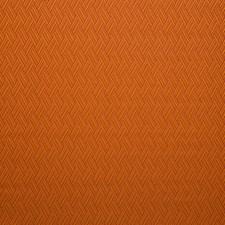 Abricot Decorator Fabric by Scalamandre