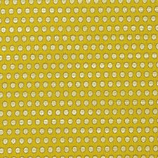 Mimosa Decorator Fabric by Scalamandre