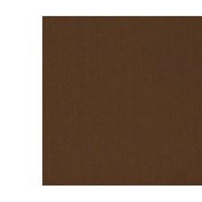 Sepia Decorator Fabric by Scalamandre