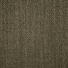 Teak Solid Decorator Fabric by Pindler
