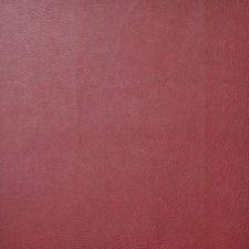Wine Decorator Fabric by Maxwell