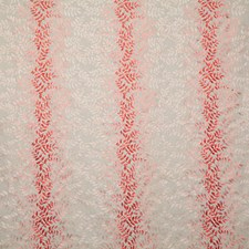 Coral Decorator Fabric by Pindler