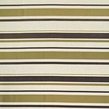 Hollydale Stripe Olive by Kasmir
