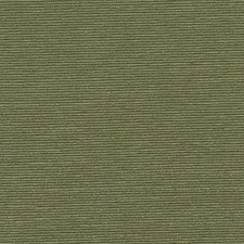 Ivy Decorator Fabric by Highland Court