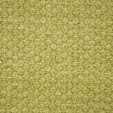Citrus Decorator Fabric by Pindler