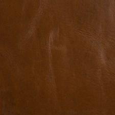 Brown Skins Decorator Fabric by Kravet