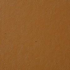 Honey Decorator Fabric by Pindler