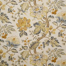 Amber Traditional Decorator Fabric by Pindler